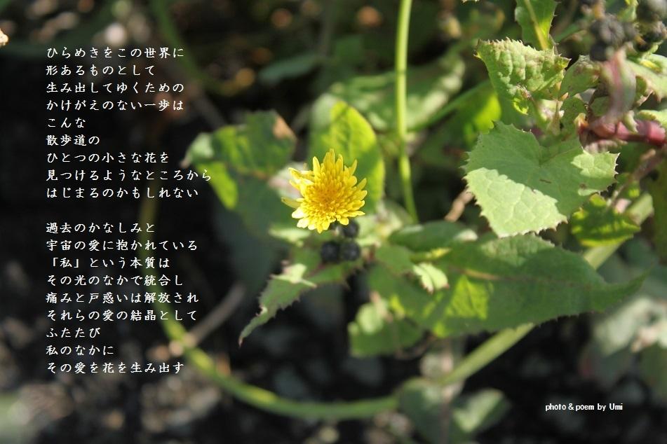 f0351844_17513926.jpg