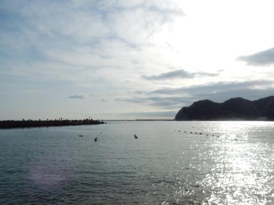 '18,1,19(金)興津海岸まで2時間半の散歩!_f0060461_10471284.jpg