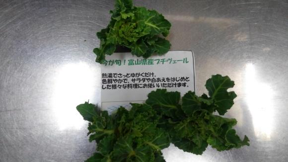 旬の野菜_b0251421_13151844.jpg