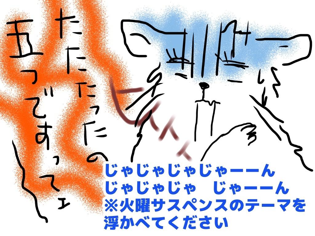 e0387640_17412202.jpeg