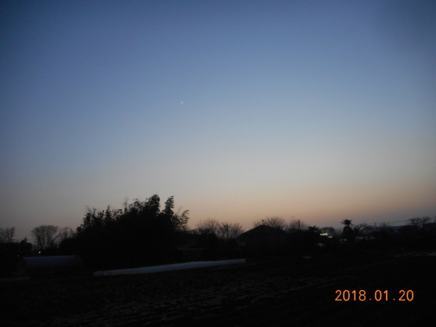 b0152049_18404408.jpg