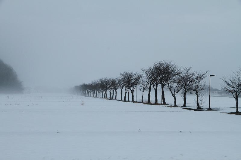霧の風景_c0155950_21173138.jpg