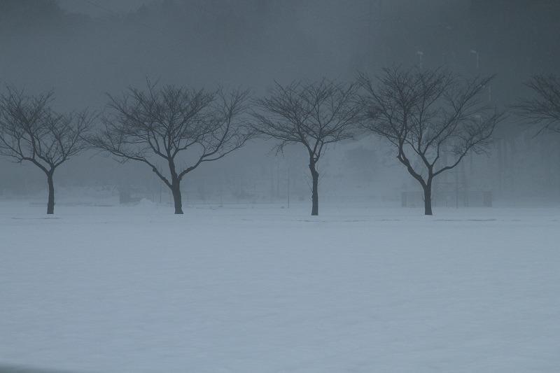 霧の風景_c0155950_21183721.jpg
