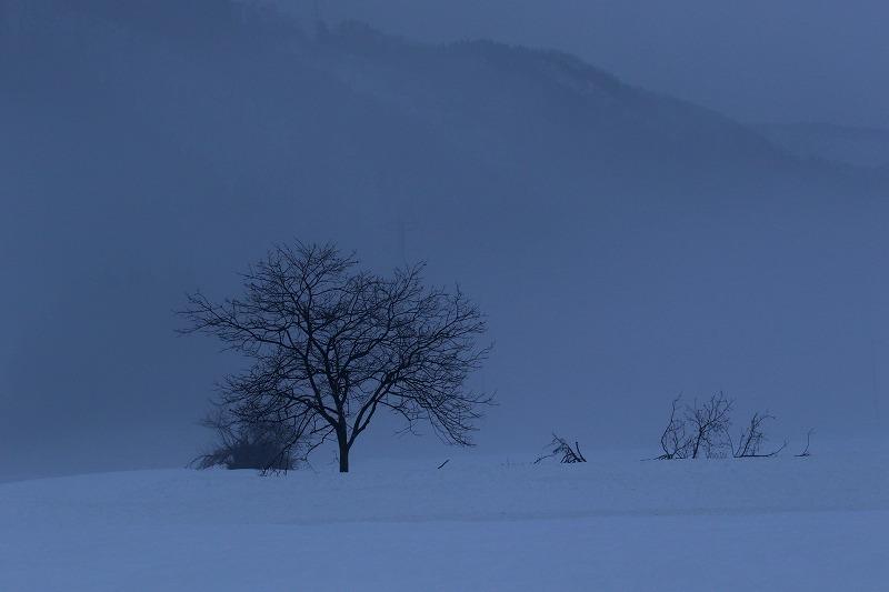 霧の風景 2_c0155950_21213055.jpg