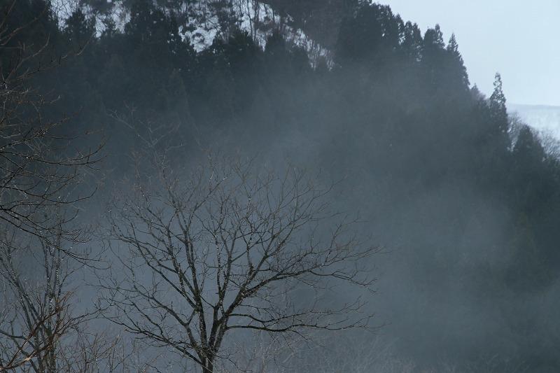 霧の風景 2_c0155950_21220880.jpg