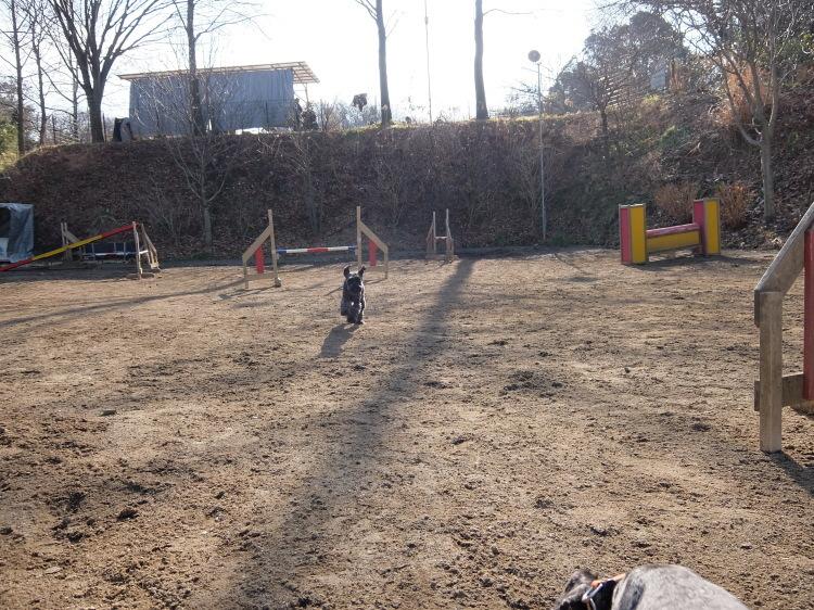 f0363628_20061922.jpg