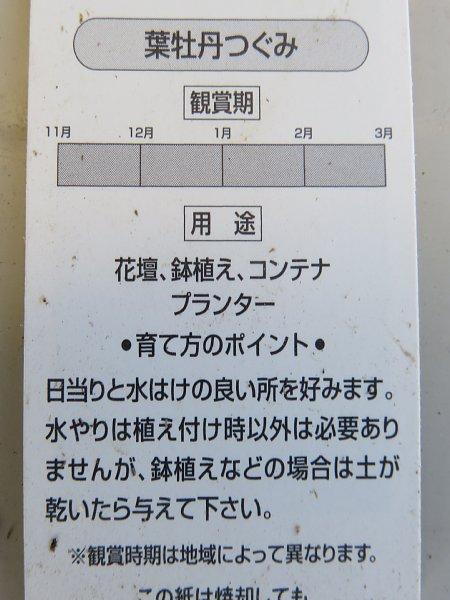 b0341140_13431875.jpg