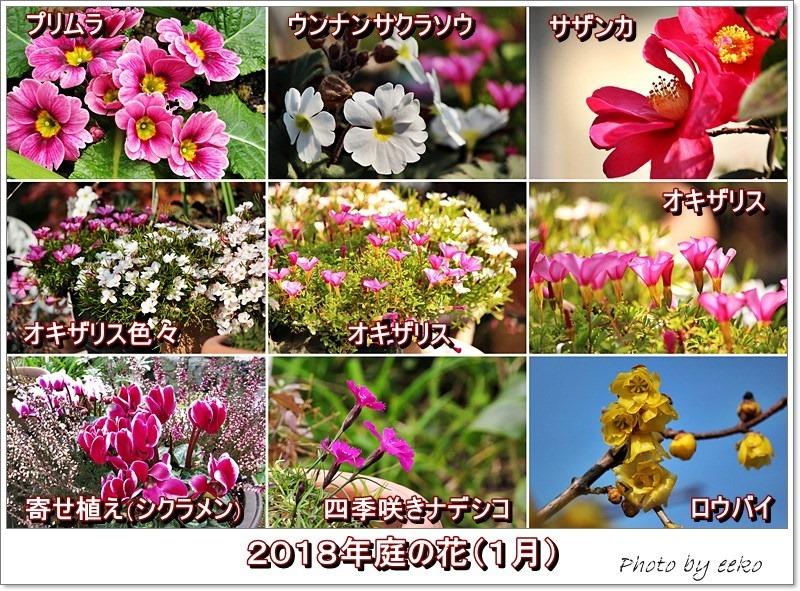 f0104569_20413084.jpg