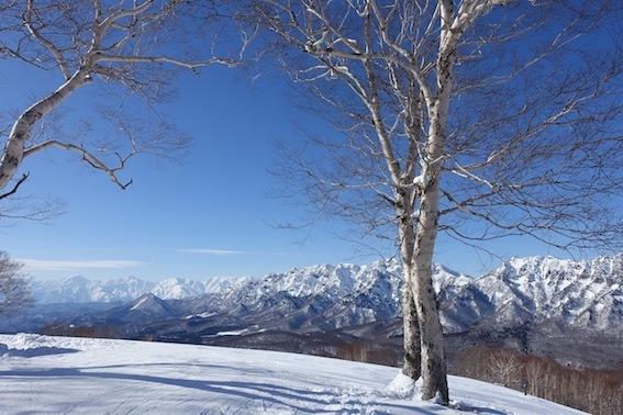 山スキー_f0230689_18111925.jpg