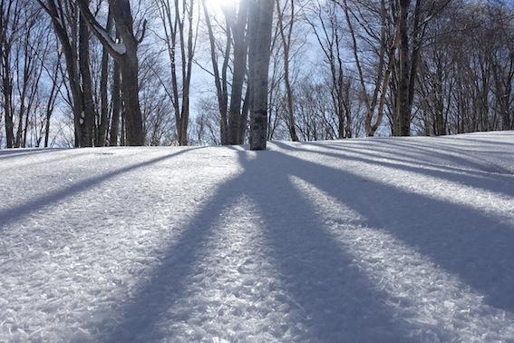 山スキー_f0230689_18111975.jpg