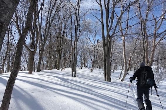 山スキー_f0230689_18142357.jpg