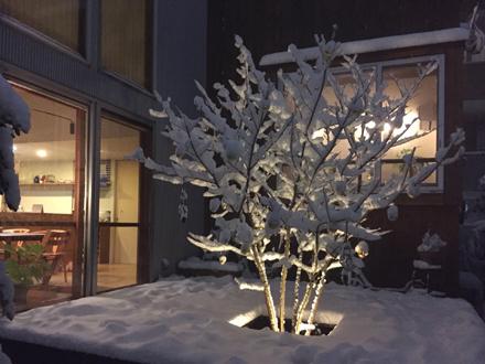 出窓の灯りと雪景色_b0183404_18412223.jpg
