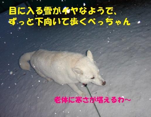 f0121712_21575598.jpg