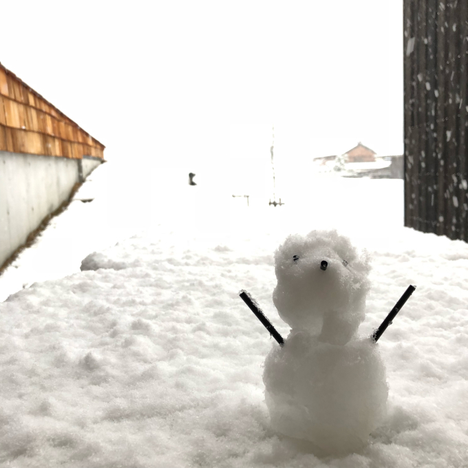雪やコンコン_e0149215_18223309.jpg