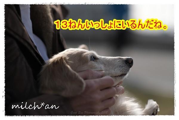b0115642_21342703.jpg