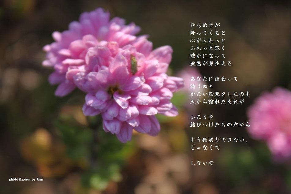 f0351844_14453351.jpg
