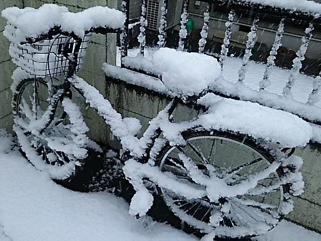 大雪警報_f0189467_22040496.jpg