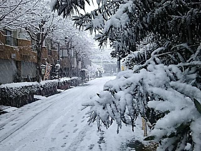 大雪警報_f0189467_22042922.jpg