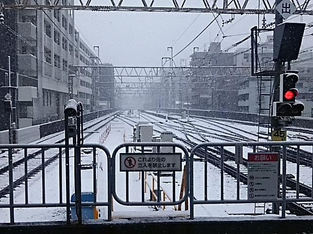 大雪警報_f0189467_22042943.jpg