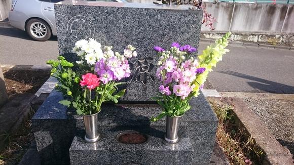 母のお誕生日☆_e0040673_11243069.jpg