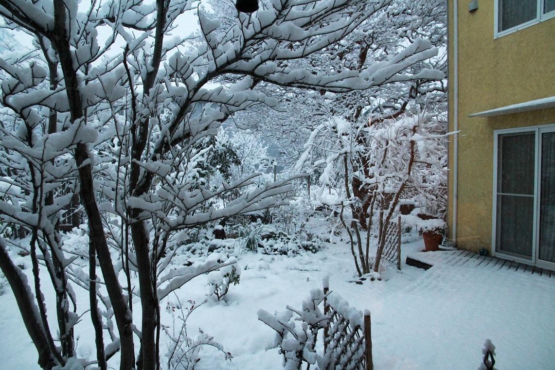 雪見酒の後の雪かき_a0107574_19355034.jpg