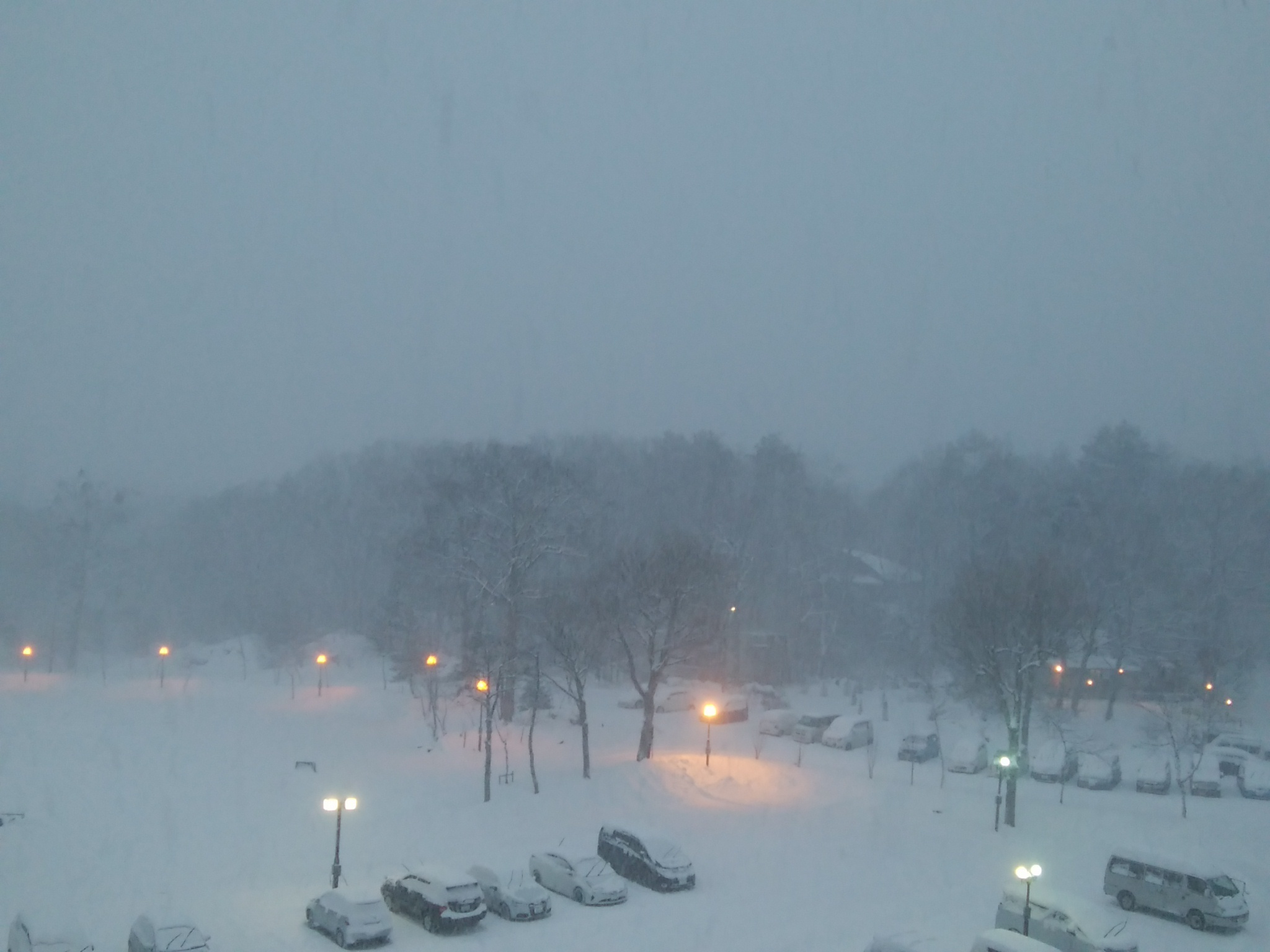 雪降ってますぜ!_f0180878_17160195.jpg