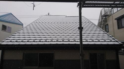 「雪」_a0075684_13472372.jpg