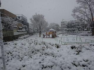 関東地方、4年ぶりの大雪!!_c0223192_23371609.jpg