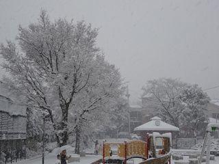 関東地方、4年ぶりの大雪!!_c0223192_23372047.jpg