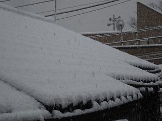 関東地方、4年ぶりの大雪!!_c0223192_23372349.jpg