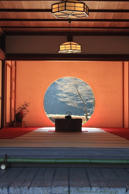 北鎌倉 冬の明月院 ②_f0374092_15332035.jpg