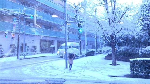 大雪警報 _b0184294_16123672.jpg