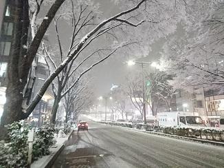 本日の東京のお天気→雪景色へ!_d0091909_09111218.jpg