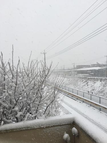 昨日はすごい雪でしたね!_c0146921_11380155.jpg