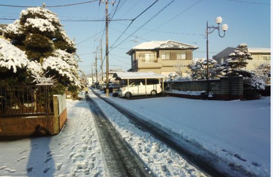 雪の影響、大丈夫でしょうか_a0151444_10455742.jpg