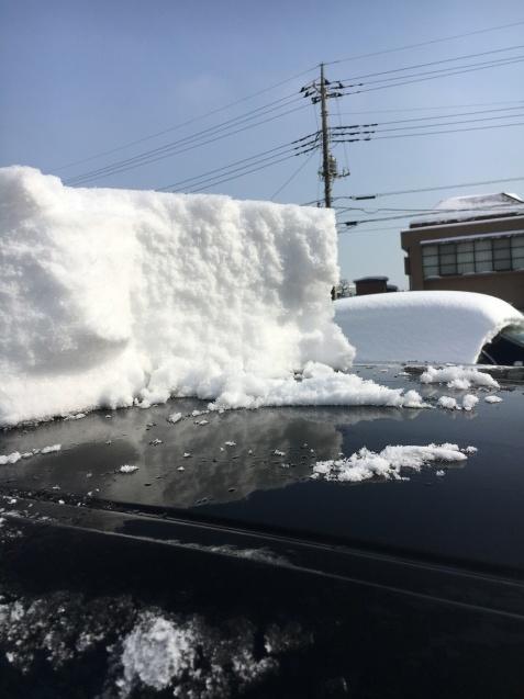 朝から雪掻き_c0206645_17000520.jpeg