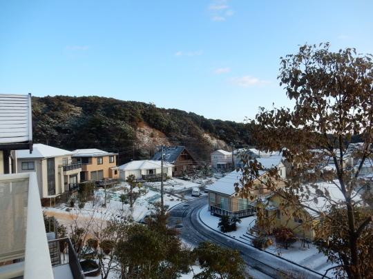 '18,1,23(火)関東地方は大雪でマヒしてたよ!_f0060461_08550608.jpg