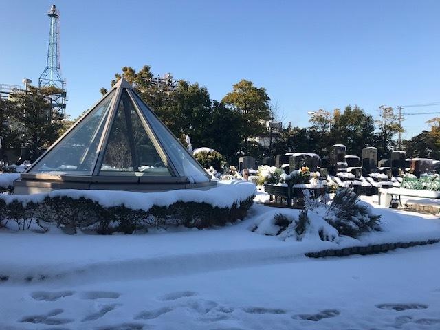 大雪から一夜明けて。_b0263390_09450803.jpg