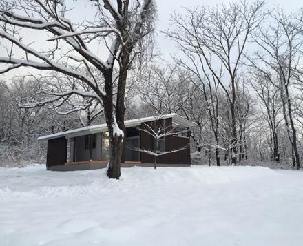 雪景色のオニグルミと焼杉の家_b0183404_21392275.jpg