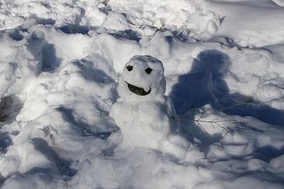 雪のあと_b0049307_11511084.jpg