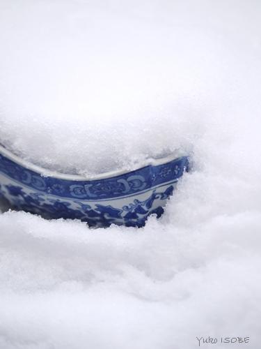 雪の日に_a0169924_22020545.jpg