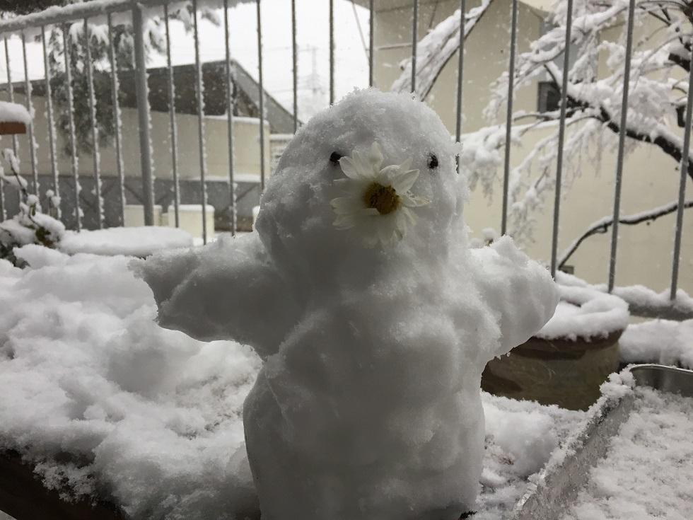 雪だるま_f0070743_10042514.jpg
