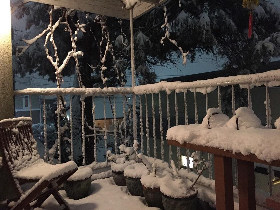 雪だるま_f0070743_10043192.jpg