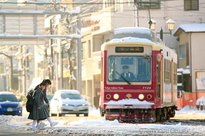 雪の朝_c0211961_00593689.jpg