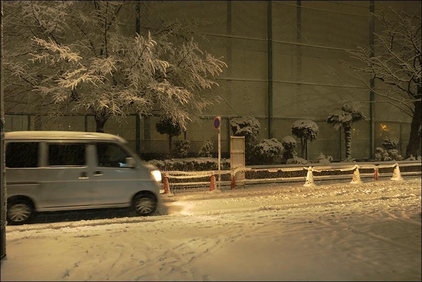 東京は二十数センチの雪となりました_a0031363_19201363.jpg