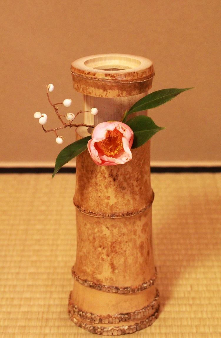 茶花 ~椿・セイオウボ(西王母)、南京ハゼ~_a0107574_17494308.jpg