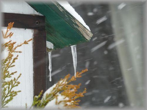 猛吹雪_e0365880_16425287.jpg