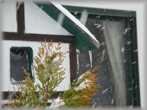 猛吹雪_e0365880_16432245.jpg