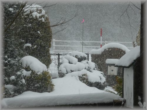 猛吹雪_e0365880_16435052.jpg