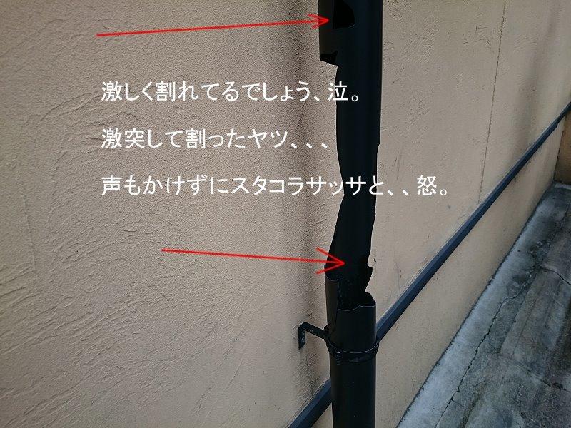 b0157386_16462820.jpg